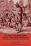 In the Wilderness with the Red Indians: German Missionary to the Michigan Indians, 1847-1853: German Missionary to the Michigan Indians, 1847-53 (Great Lakes Books)