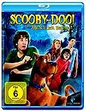 Scooby-Doo Das Abenteuer beginnt kostenlos online stream