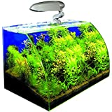 WAVE Box Vision 45 Cosmos Aquarium pour Aquariophilie