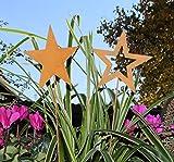 Nostalgic Garden 2er Set Gartenstecker Gartendeko Stern am Stab Rost Design (D)