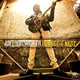 Songtexte von Joe Louis Walker - Hornet's Nest