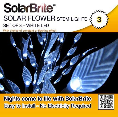solar-brite-lot-de-3-lampes-solaires-20led-tige-de-vos-fleurs
