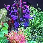 PANYTOW Aquarium Plastic Plants Fish Tank Imitation Sea Urchin Water Aquatic Grass Artificial Plants Decoration for… 13