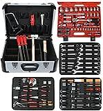 FAMEX 720-09 Mechaniker Werkzeugkoffer mit High-End Werkzeugbestückung, mit Steckschlüsselsatz