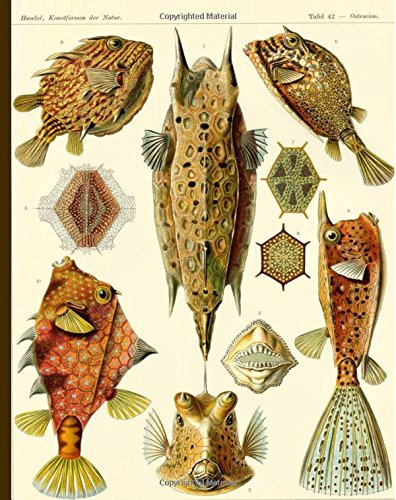 Tris-puffer (Tafel 42 - Ostracion, Kunstformen der Natur: Vintage Pufferfish Illustration Notebook, 200 Page Softcover Journal, College Ruled, 8