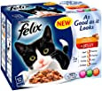 Felix As Good As It Looks Doubly Delicious Meat 12 x 100 g (Pack of 4)