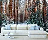 StickersWall Winter Snow Tree Woodland Forest Trees Landscape Scenery Wall Mural Photo Wallpaper Picture Self Adhesive 1030 (342cm(W) x 242cm(H))