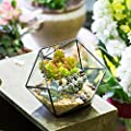 Modernes handgefertigt dreieckig Half Ball Schüssel Form Glas Geometrische Terrarium Balkon Tischplatte Miniatur Bonsai Blumentopf Fensterbank Mittelpunkt Display Container Übertopf für Sukkulente Kakteen von NCYP bei Du und dein Garten