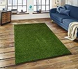 Shaggy Hochflor Teppich Läufer Top Qualität Langflor ca. 50 mm, Weich und trendig, Farbe Grün, Größe: 80x300 cm