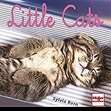 Little Cats (Geschenkbücher)