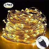 Stringa Luci Led, Adomor [2pack] 10M 100 LEDs Filo di Rame Catene Luminose USB Impermeabile Illuminazione, per il partito, Natale, Vacanza, Camera da letto, Decorazione della camera, Decorazione di nozze (Bianco caldo)