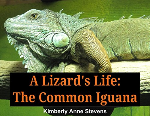 A Lizard's Life:: The Common Iguana (English Edition)