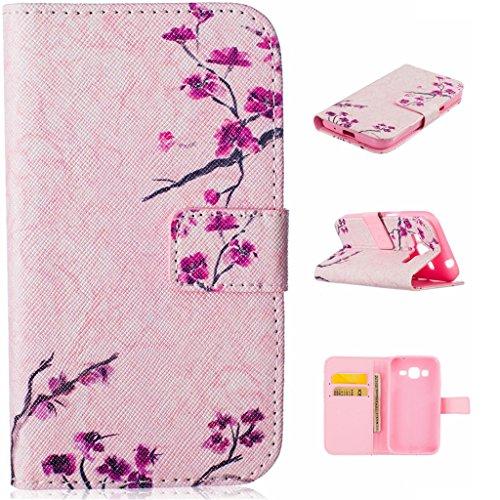 Custodia per iPhone 5, iPhone 5S, iPhone SE Custodia, con protezione per lo schermo in vetro temperato], idatog (TM)–Custodia a Libro Magnetica, alta qualità, classica Colorful Cool Pattern Design P Pink wintersweet