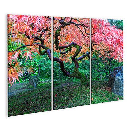 Cuadros Salon Antiguo árbol Arce Hojas Encaje Rojo