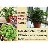 20x Buster Semillas de vainilla repelente de insectos Mosquito Killer Planta Semillas raro en Alemania Jardín dentro-fuera área #227