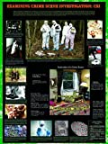 American Educational Examining Crime Scene Investigation Forensics Poster, 38