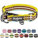 Blueberry Pet 2cm M 3M Reflektierendes Bunt Gestreiftes Gelbe Azurblau und Braun Hundehalsband für Mittelgroße Hunde