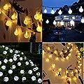 Solar String Lichter, OxyLED 30 LED Garten Terrasse au?erhalb Lichterketten, wasserdichte Indoor/Outdoor Lichterketten, gro?e Garten Terrasse Terrasse au?erhalb Xmas Lichter von OxyLED auf Lampenhans.de