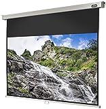 celexon Rollo-Leinwand Professional | Format 16:9 | Nutzfläche 300 x 169 cm | Beamer-Leinwand geeignet für jeglichen Projektortyp, Full-HD und 3D-Leinwand | einfache Installation, gute Planlage