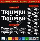 Aufkleber stickers TRIUMPH UNIVERSAL moto decal bike-Motorrad- Cod. 0637 (Bianco cod. 010)