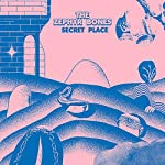 Secret places [Vinilo]...