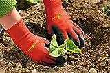 WOLF-Garten Beet-Handschu... Ansicht