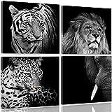 Feeby Frames, Leinwandbild, Bilder, Wand Bild - 4 Teile - Wandbilder, Kunstdruck 40x40 cm, LÖWE, TIGER, ELEFANT, TIERE, AFRIKA, SAFARI, SCHWARZ-WEIß