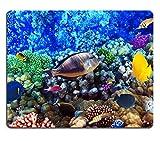 Liili Mauspad Naturkautschuk Mousepad Bild-ID: 17413726Koralle und Fische im roten Meer Ägypten Afrika