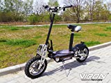 Elektro Scooter 1000 Watt E-Scooter