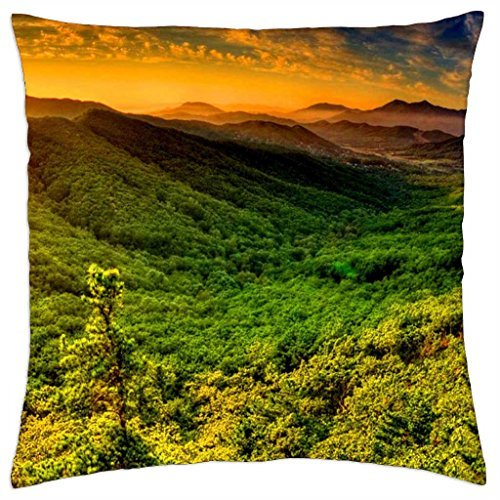beautiful-sunbeams-over-green-valley-throw-pillow-cover-case-18
