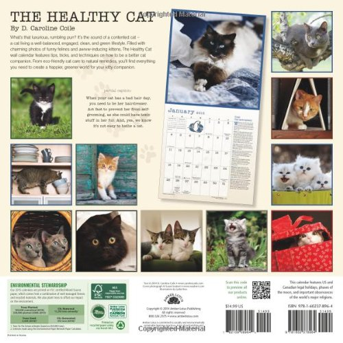 The Healthy Cat Calendar: A Year of Healthy Tips for Your Furry Friends