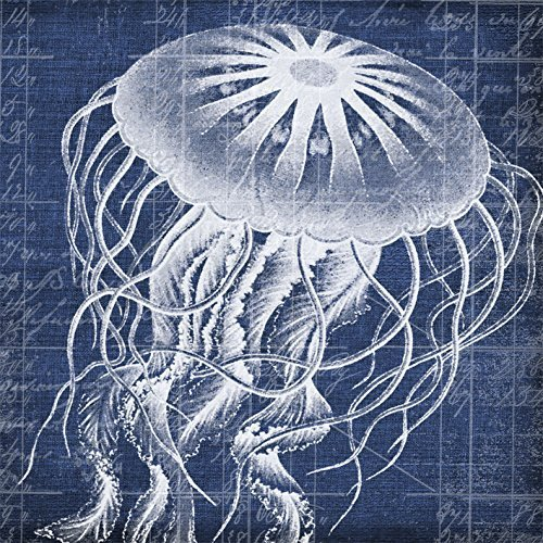 paperproducts-design-nautica-jellyfish-paper-beverage-cocktail-napkin-5-by-5-inch-by-paperproducts-d