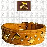 Woza Premium Windspiel Halsband 3,3/31CM PASIPHEA 24-Karat Gold VERGOLDET Vollleder RINDNAPPA Handmade Greyhound Collar