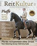 ReitKultur 4: Piaffe