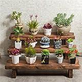 VIOY Regal-Organisator-Behälter-Regal-Teiler für Schränke Lagerregal-Aufbewahrungsbehälter-Blumen-Gestell-Schemel-Wohnzimmer-Feste Holz-Multi Geschoss-Töpfe Zahnstangen-hölzernes Blumen-Regal,D