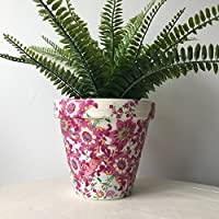 Bright Pink Flowers Terracotta Plant Pot 15.5cm
