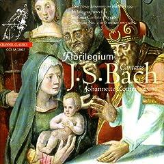 """Cantata, BWV 199 - """"Mein Herze Schwimmit in Blut"""": III. Doch Gott Mu� mir gen�dig sein - """"Recitativo"""""""