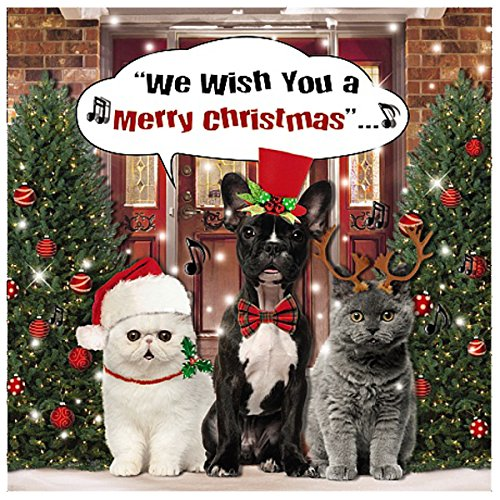 Me To You Up Close 3d Christmas Greeting Card Cats Dogs Singing