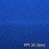 Filtermatte 100x100x3 cm PPI 10/20/30, Filtermaterial für Gartenteichfilter und Aquarienfilter geeignet (PPI 30 (fein))