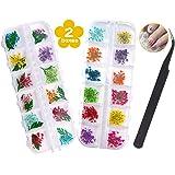 Gedroogde Bloemen voor Nagels - 2 Dozen (36 stuks) Gedroogde Bloemen voor Hars Ambachten, 24 Bloemen en 12 Bladeren 3d Nail A