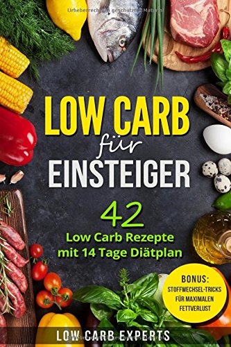 Low Carb Fur Einsteiger 42 Low Carb Rezepte Mit 14 Tage Diatplan