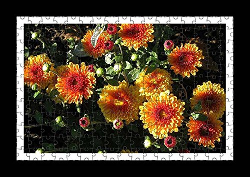 puzzle-style-pre-assembles-imprimer-mur-de-chrysanthemums-flowers-flowerbed-flower-buds-light-by-lis