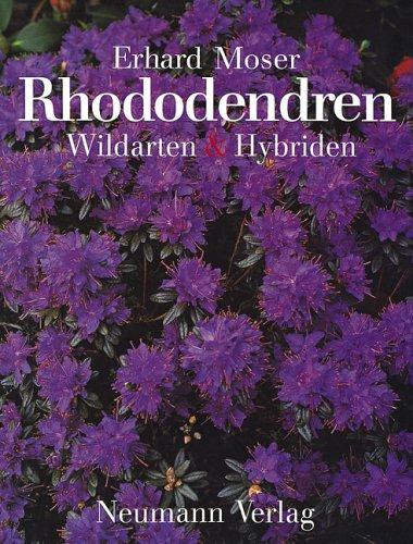 Rhododendren: Wildarten und Hybriden