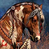 DIY 5D Diamond Painting, Crystal Rhinestone Diamond Embroidery Paintings Pictures Arts Craft for Home Wall Decor Indian Horse Head 11.8 X 11.8 Inch