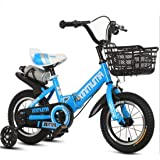 COOLBABY Kids Bike with Hand Brake and Basket for Ages 3-9 Years Girls, 12 14 16 18 Inch Princess Bikes Bicycles with Trainin