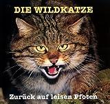 Die Wildkatze: Zur?ck auf leisen Pfoten