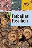 Farbatlas Fossilien - Max Urlichs, Bernhard Ziegler