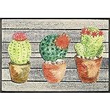 Wash&Dry 087168 Jardin De Cactus Fußmatte, Acryl, Bunt, 50 x 75 x 0.7 cm