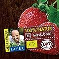 Bio Immertragende Erdbeere Elan von LÀBiO! Gemüse auf Du und dein Garten