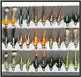 Trout Fliegenfischen Fliegen 30Gold Headed Nymphs Set 33j-12spezielle Flash Rücken